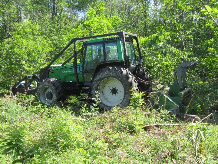 Travaux forestiers152