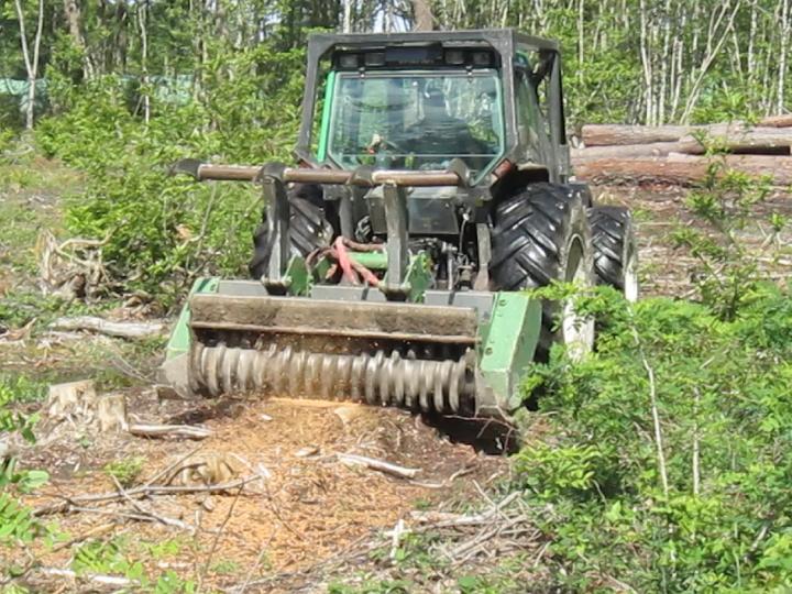 Travaux forestiers159